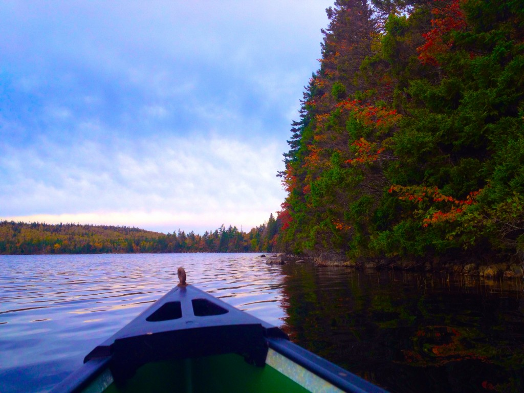 Canoe Ride Foliage Nova Scotia