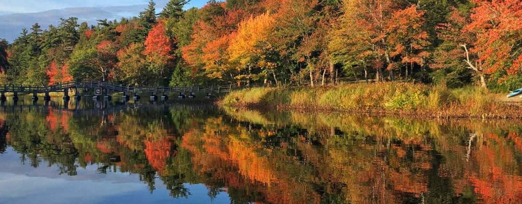 Fall Foliage at Mersey River, Nova Scotia